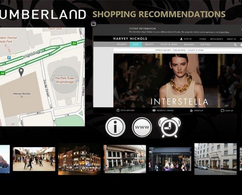 Shopping recommendation